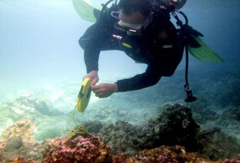 Philippine Tubattaha Reef Case